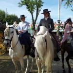Cuidados de los caballos