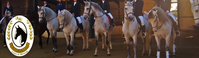 Escuela de Equitación Al-Andalus